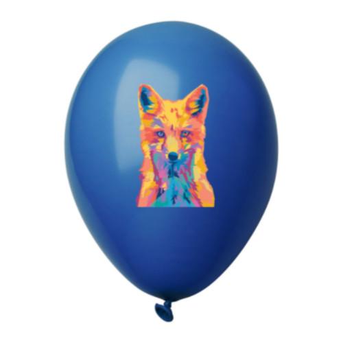 Ballons de baudruches